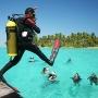 Tour Lặn biển kết hợp câu cá - Phú Quốc